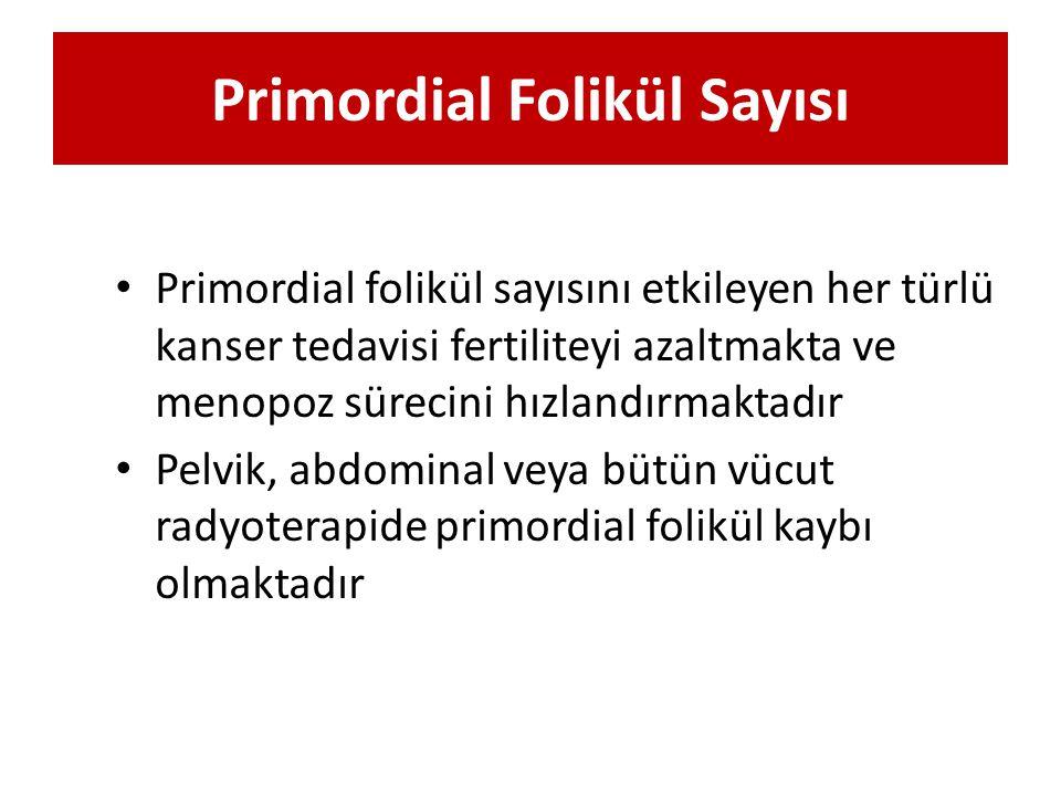 Primordial Folikül Sayısı
