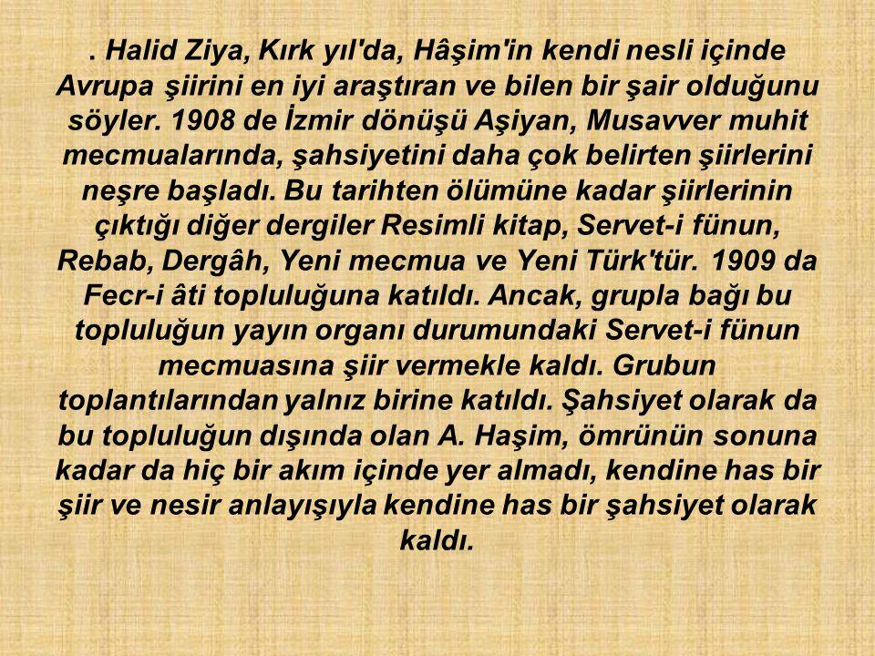 Halid Ziya, Kırk yıl da, Hâşim in kendi nesli içinde Avrupa şiirini en iyi araştıran ve bilen bir şair olduğunu söyler.