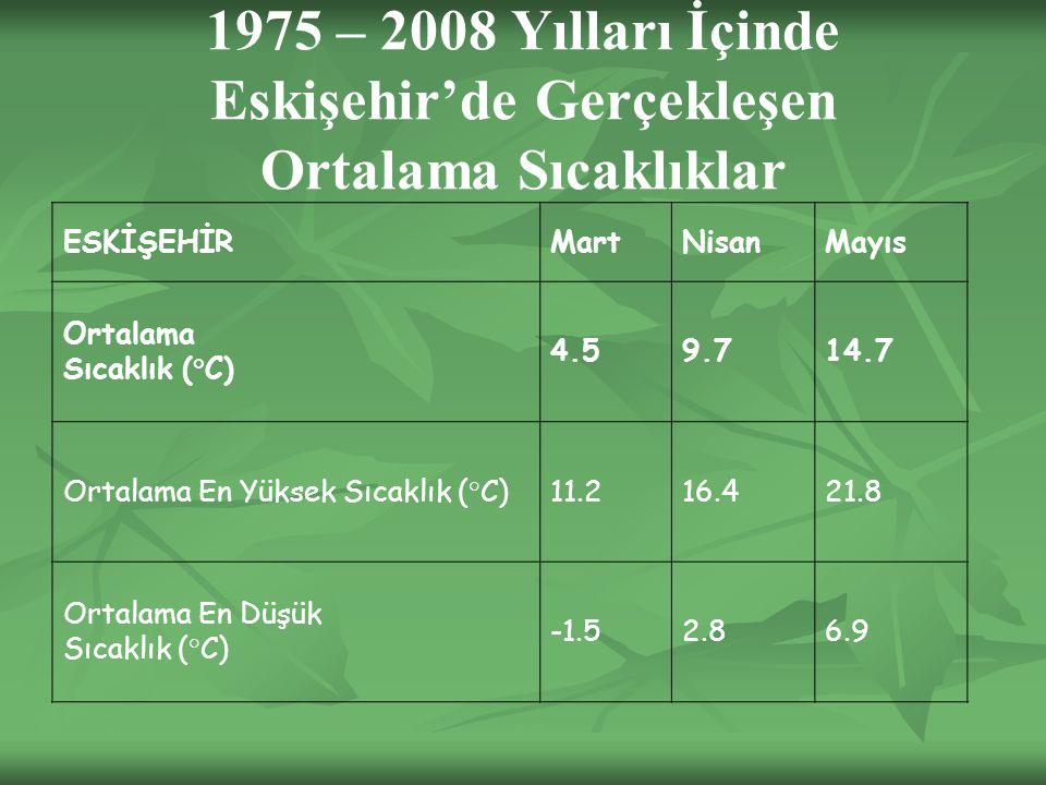 1975 – 2008 Yılları İçinde Eskişehir'de Gerçekleşen Ortalama Sıcaklıklar