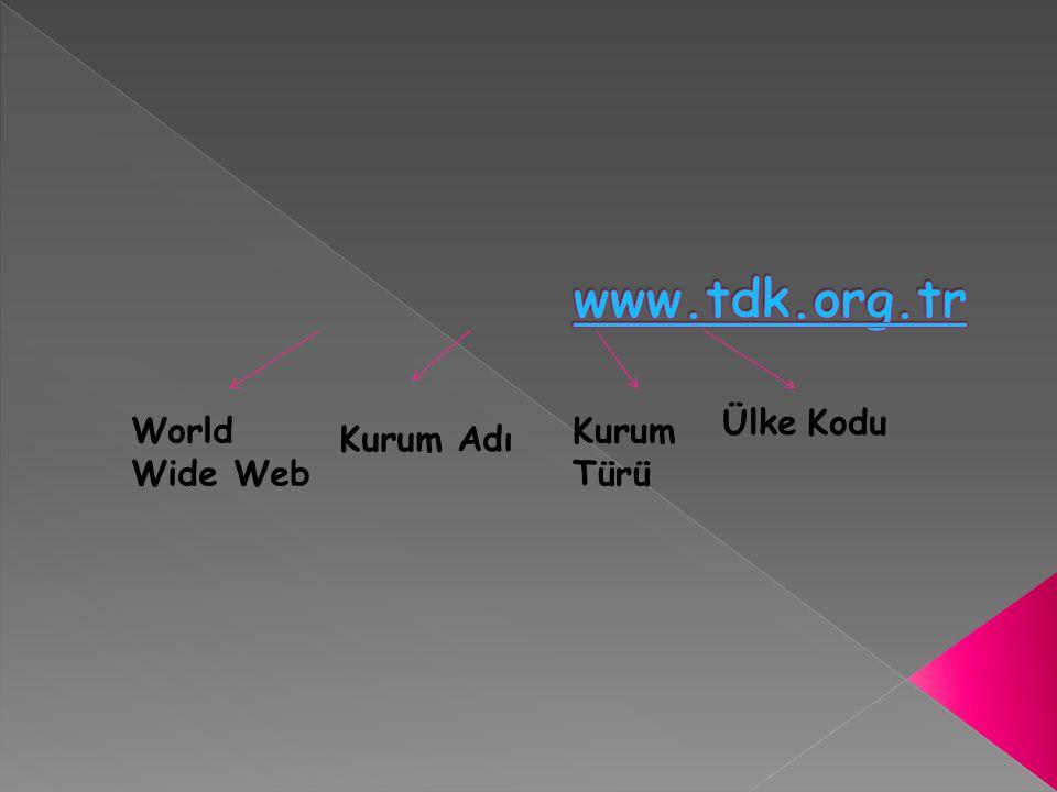 www.tdk.org.tr Ülke Kodu World Wide Web Kurum Türü Kurum Adı