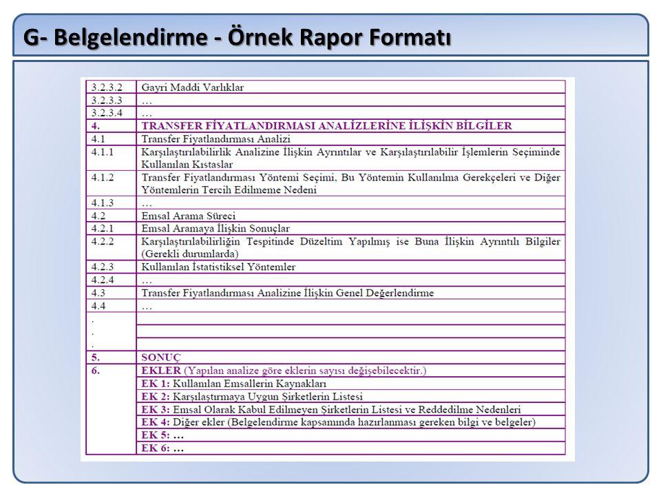 G- Belgelendirme - Örnek Rapor Formatı