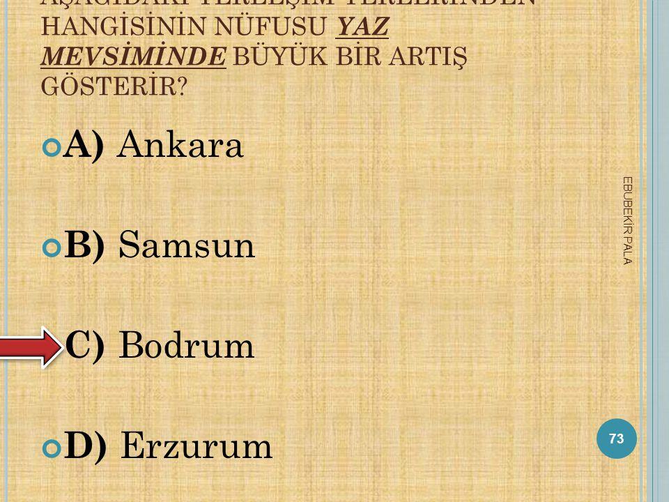 A) Ankara B) Samsun C) Bodrum D) Erzurum