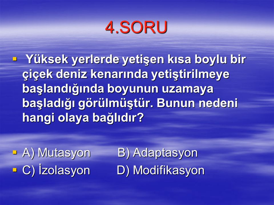 4.SORU