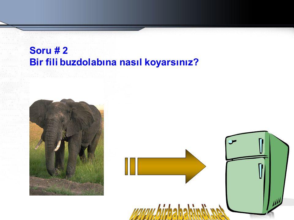 Soru # 2 Bir fili buzdolabına nasıl koyarsınız www.birbabahindi.net