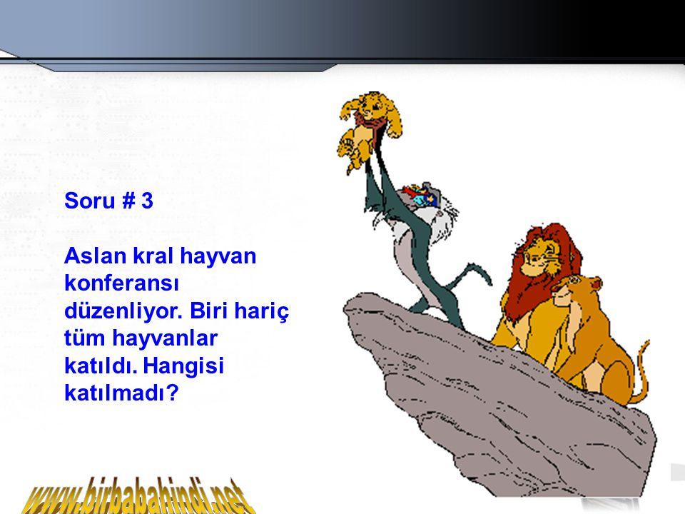 www.birbabahindi.net Soru # 3