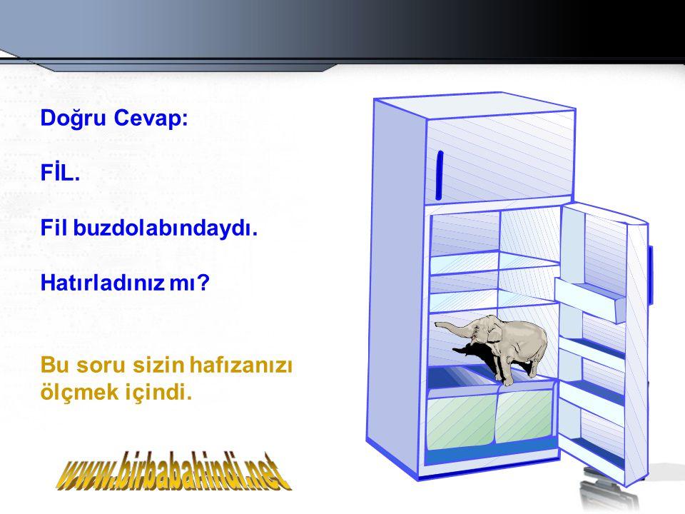www.birbabahindi.net Doğru Cevap: FİL. Fil buzdolabındaydı.