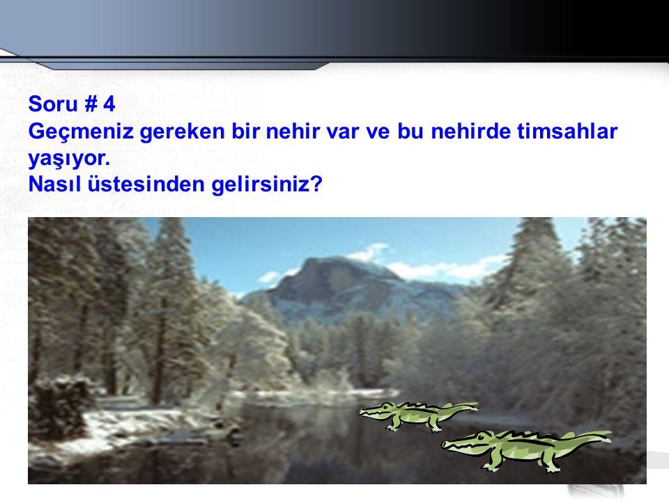 Soru # 4 Geçmeniz gereken bir nehir var ve bu nehirde timsahlar.