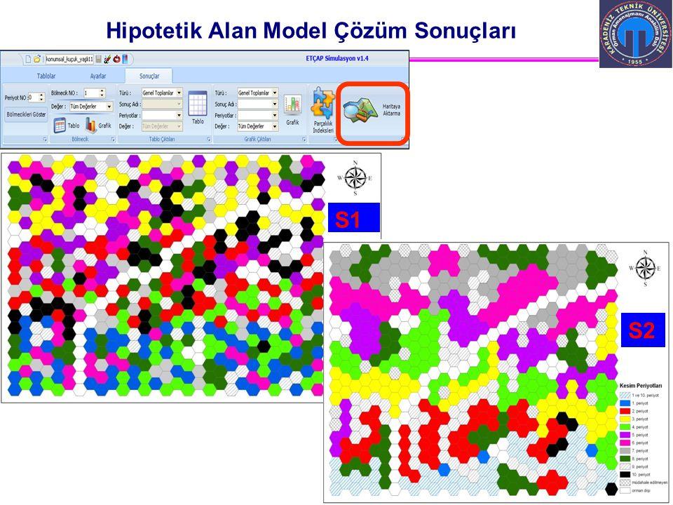 Hipotetik Alan Model Çözüm Sonuçları