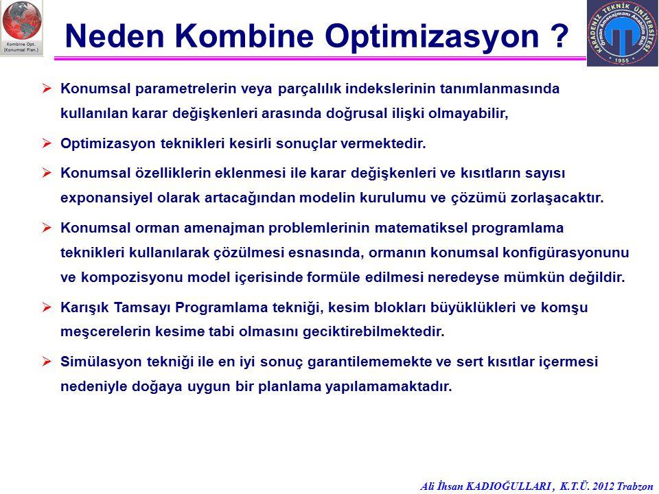 Neden Kombine Optimizasyon