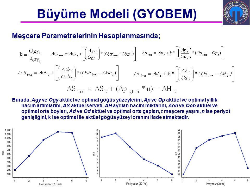 Büyüme Modeli (GYOBEM)