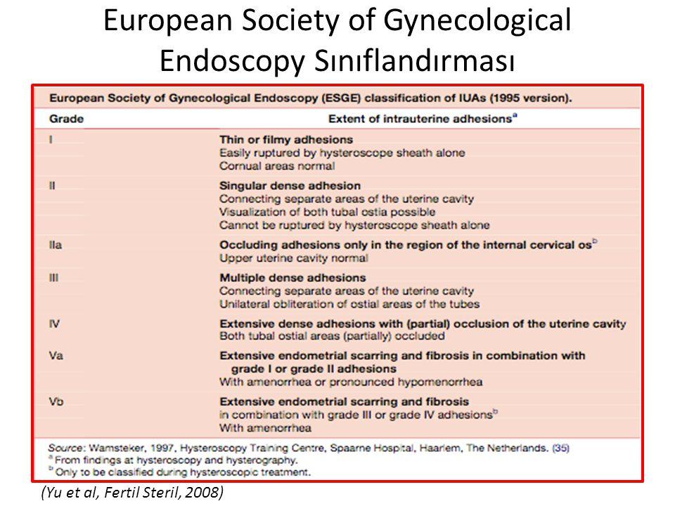 European Society of Gynecological Endoscopy Sınıflandırması