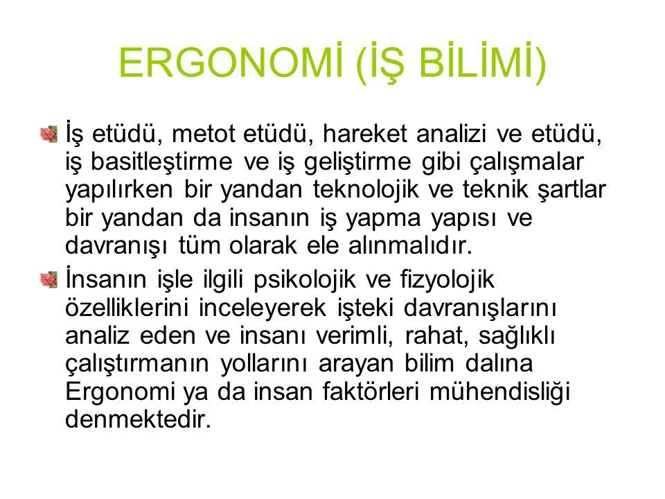 ERGONOMİ (İŞ BİLİMİ)