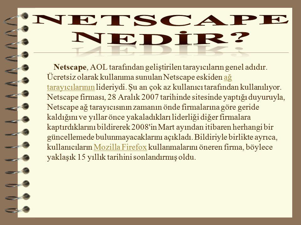 NETSCAPE NEDİR