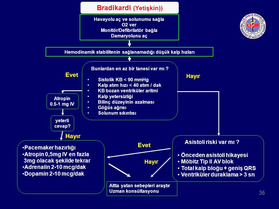Bradikardi (Yetişkin))