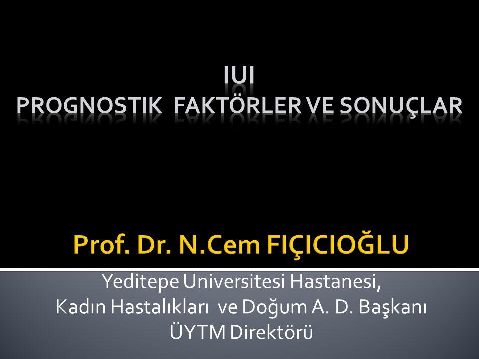 Prof. Dr. N.Cem FIÇICIOĞLU