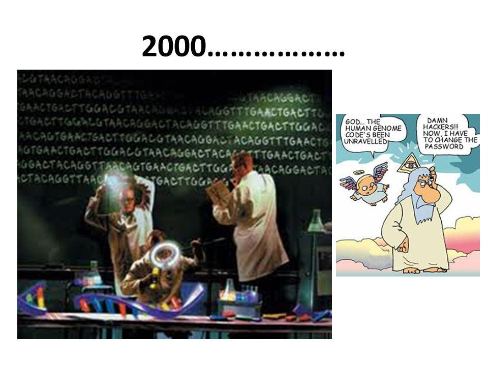2000………………