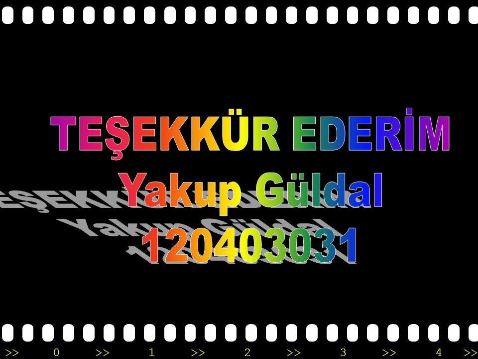 TEŞEKKÜR EDERİM Yakup Güldal 120403031