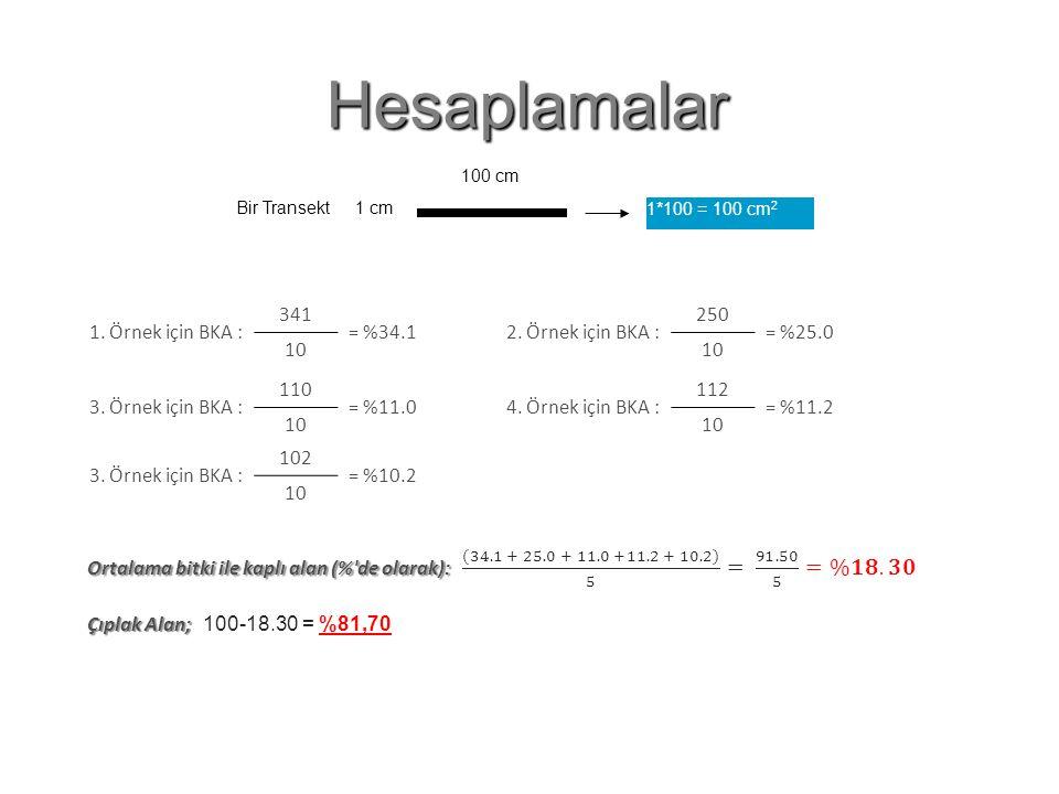 Hesaplamalar Çıplak Alan Oranı : 100-34.1 = 65.9 1. Örnek için BKA :