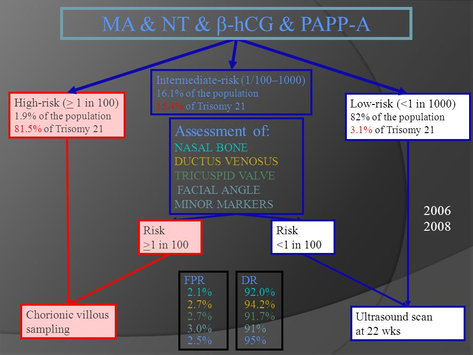 MA & NT & β-hCG & PAPP-A Assessment of: 2006 2008