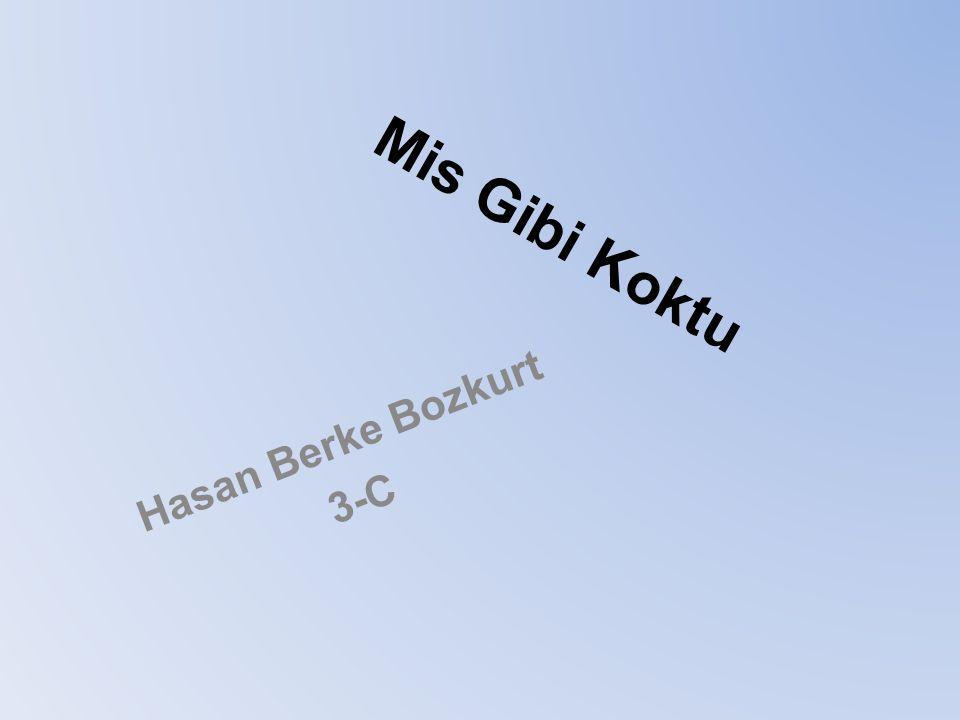 Mis Gibi Koktu Hasan Berke Bozkurt 3-C