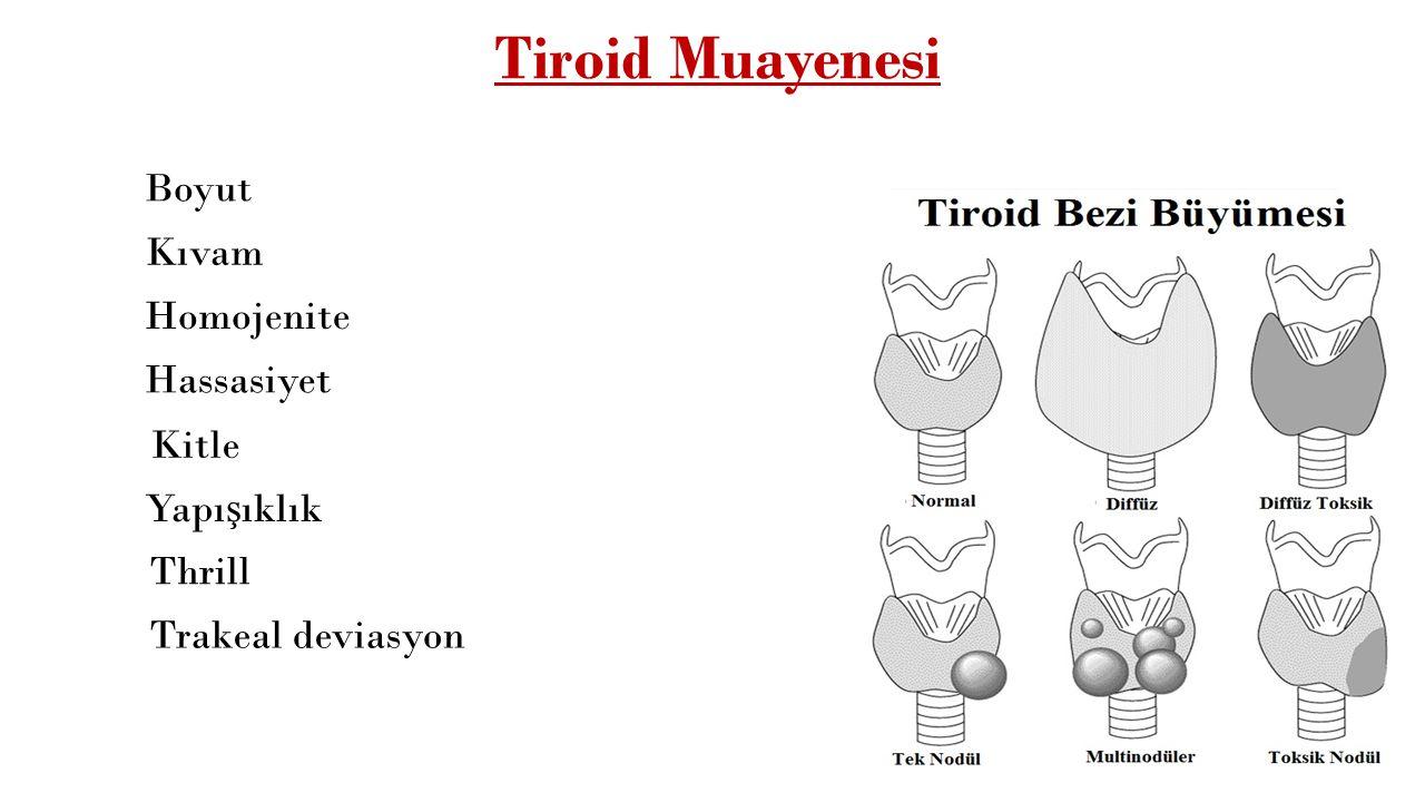 Tiroid Muayenesi Boyut Kıvam Homojenite Hassasiyet Kitle Yapışıklık