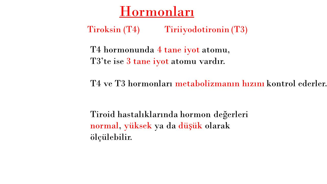 Hormonları Tiroksin (T4) Tiriiyodotironin (T3)