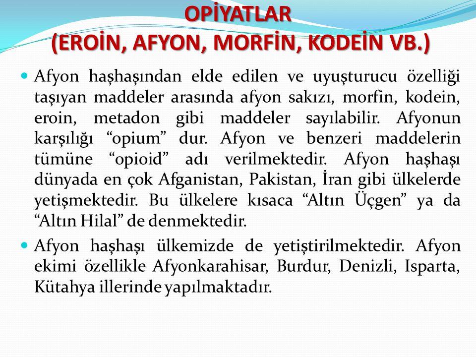 OPİYATLAR (EROİN, AFYON, MORFİN, KODEİN VB.)
