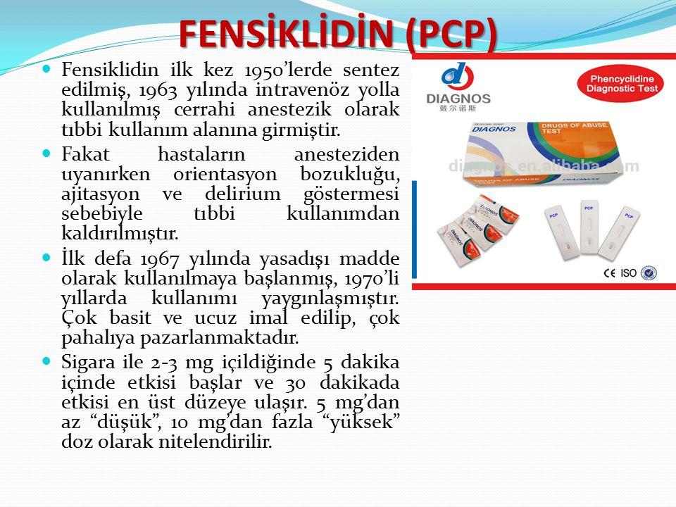 FENSİKLİDİN (PCP)