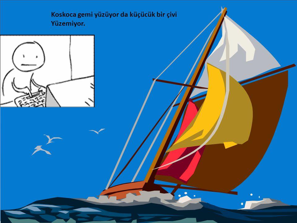 Koskoca gemi yüzüyor da küçücük bir çivi