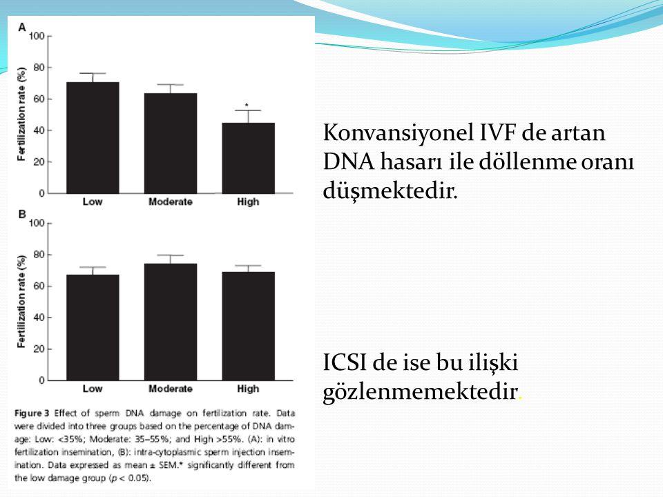 Konvansiyonel IVF de artan DNA hasarı ile döllenme oranı düşmektedir.