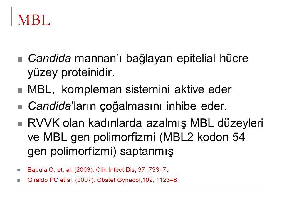 MBL Candida mannan'ı bağlayan epitelial hücre yüzey proteinidir.