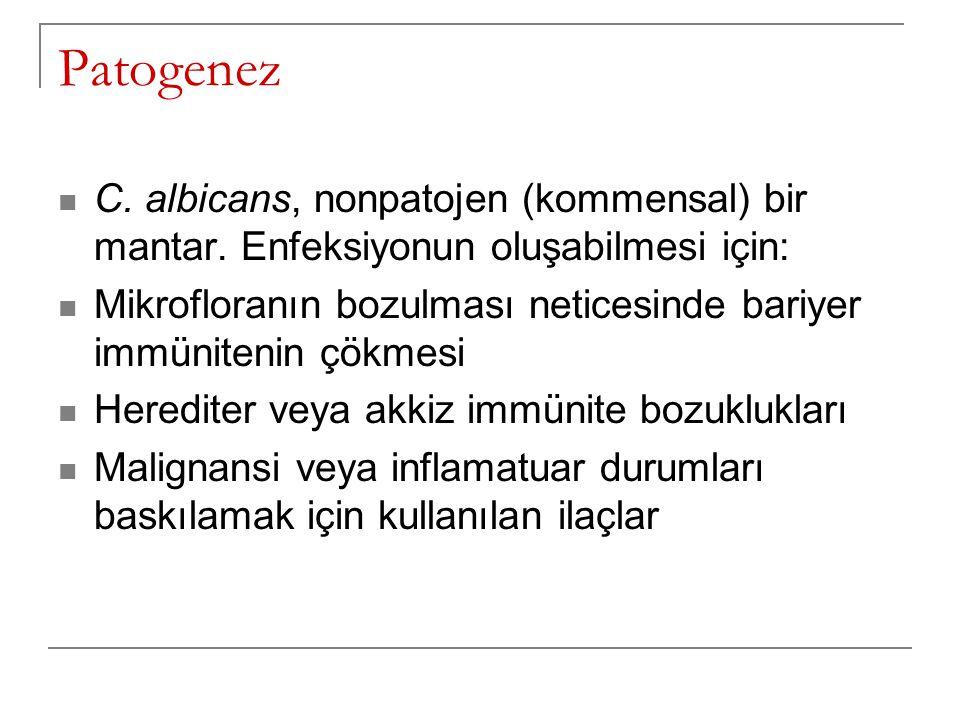 Patogenez C. albicans, nonpatojen (kommensal) bir mantar. Enfeksiyonun oluşabilmesi için: