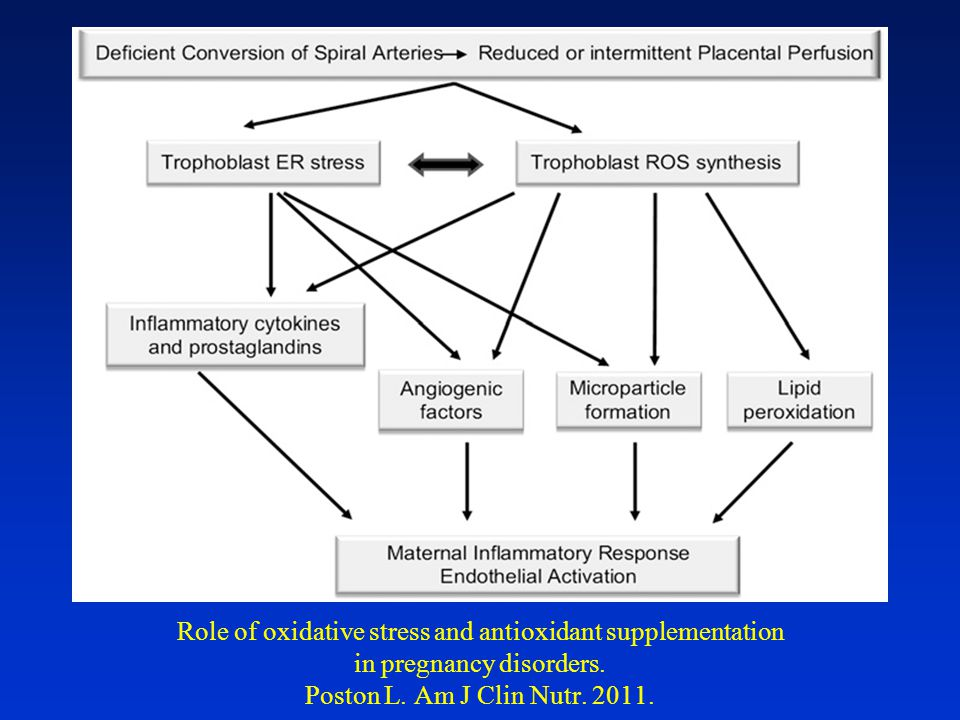 Role of oxidative stress and antioxidant supplementation in pregnancy disorders.