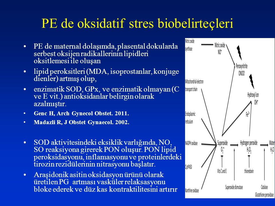 PE de oksidatif stres biobelirteçleri