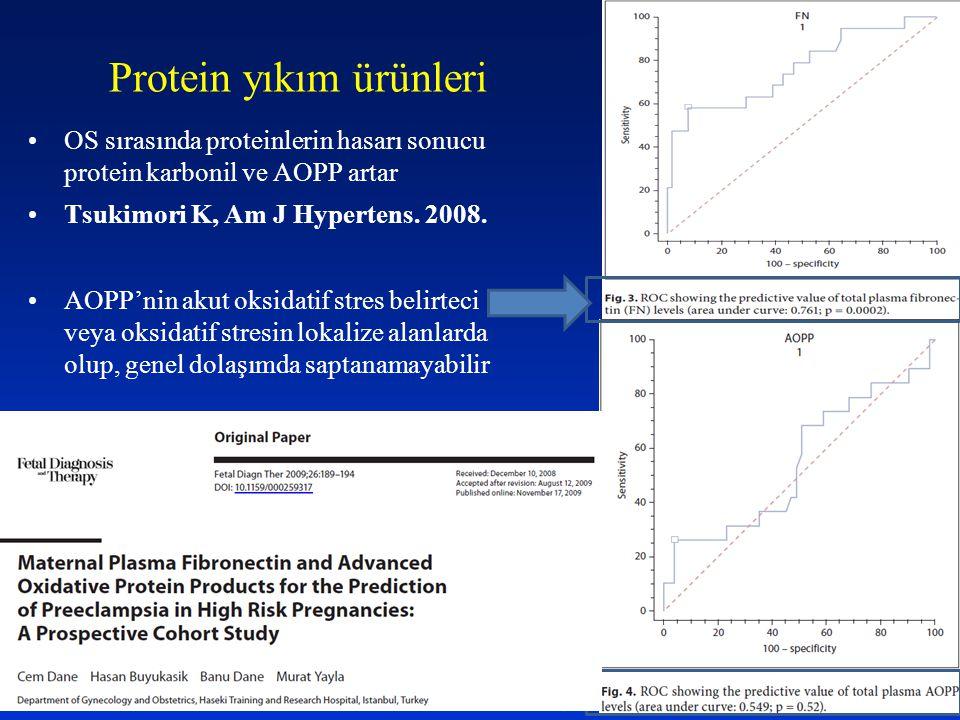 Protein yıkım ürünleri