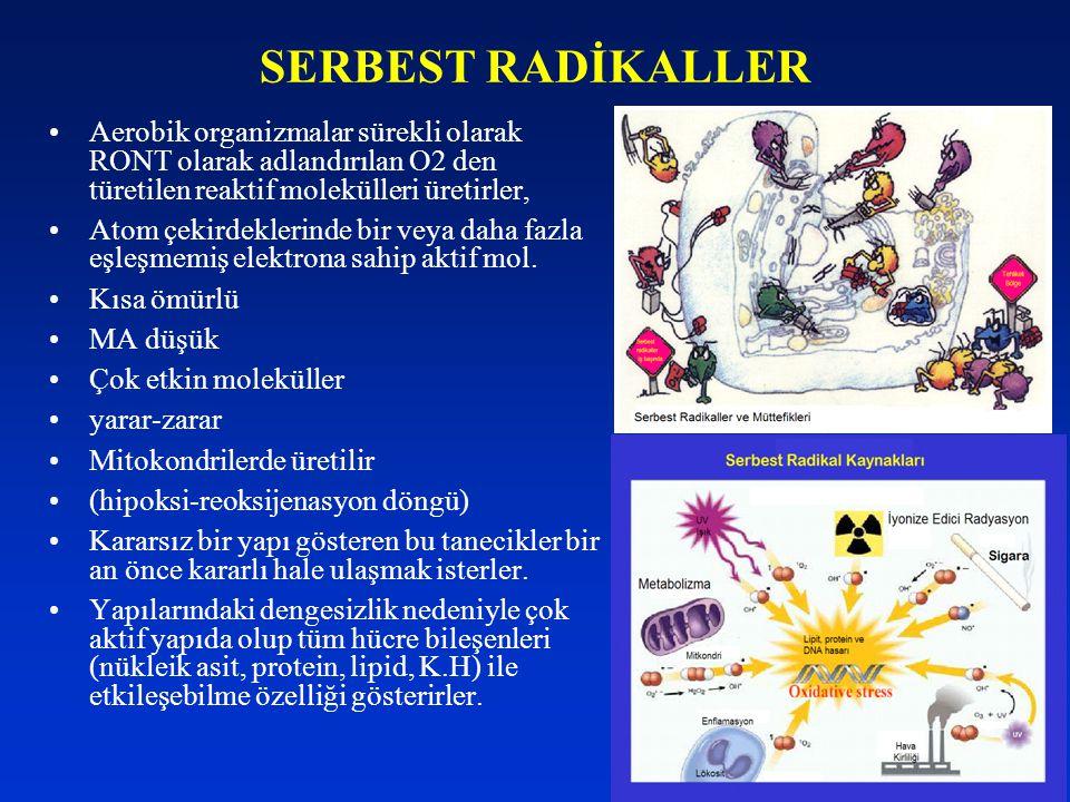 SERBEST RADİKALLER Aerobik organizmalar sürekli olarak RONT olarak adlandırılan O2 den türetilen reaktif molekülleri üretirler,