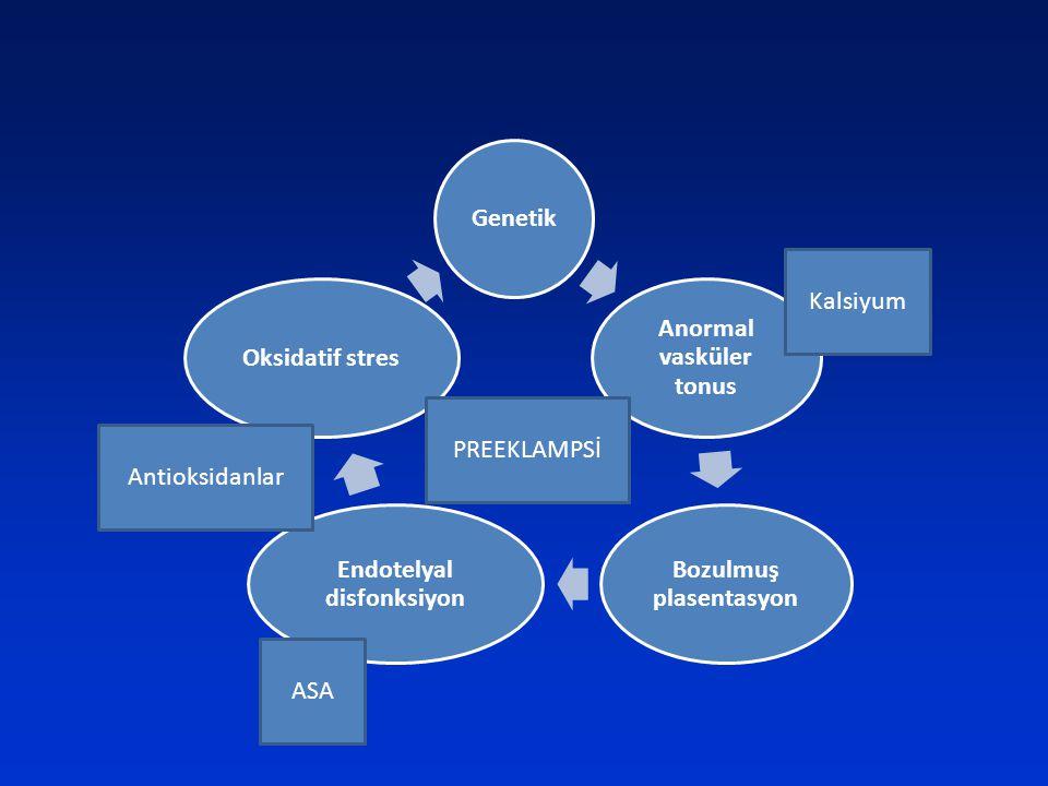 Anormal vasküler tonus Bozulmuş plasentasyon Endotelyal disfonksiyon