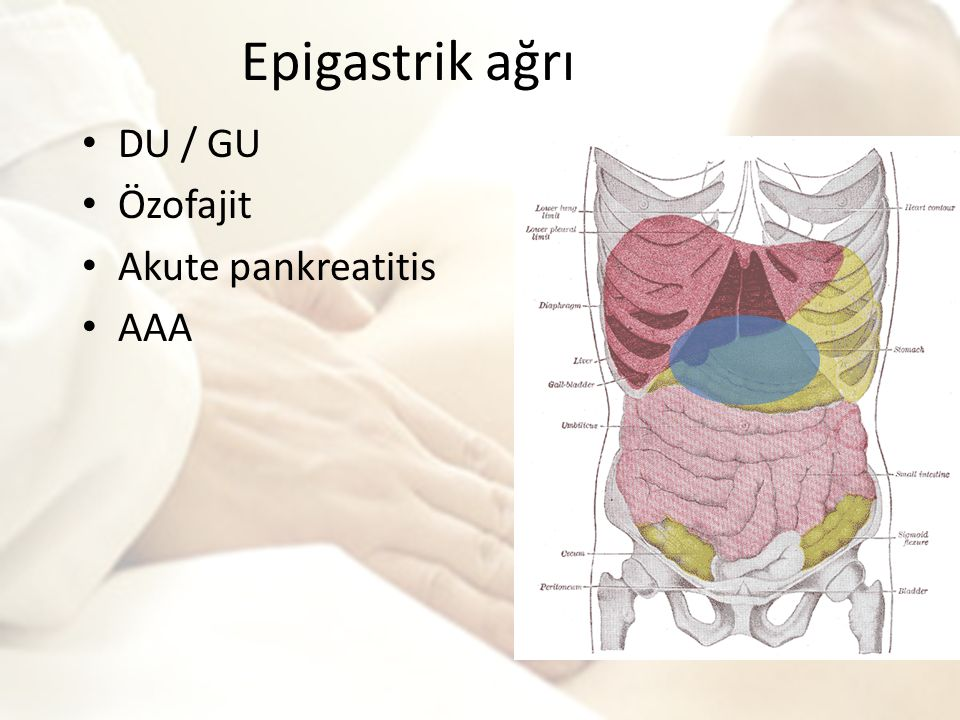 Epigastrik ağrı DU / GU Özofajit Akute pankreatitis AAA