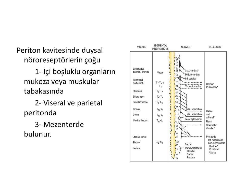 Periton kavitesinde duysal nöroreseptörlerin çoğu 1- İçi boşluklu organların mukoza veya muskular tabakasında 2- Viseral ve parietal peritonda 3- Mezenterde bulunur.