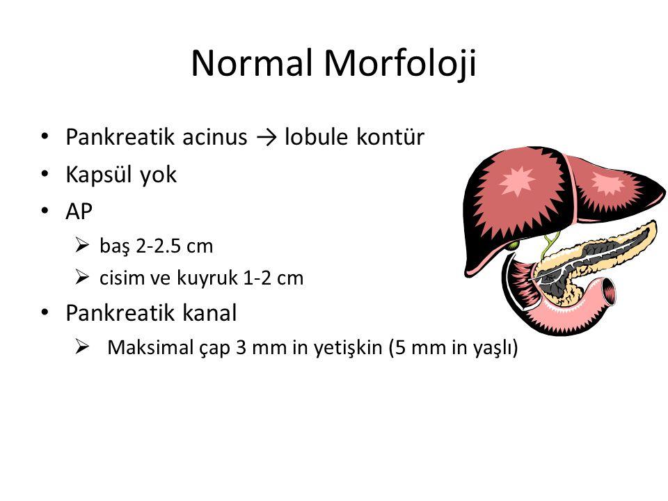 Normal Morfoloji Pankreatik acinus → lobule kontür Kapsül yok AP