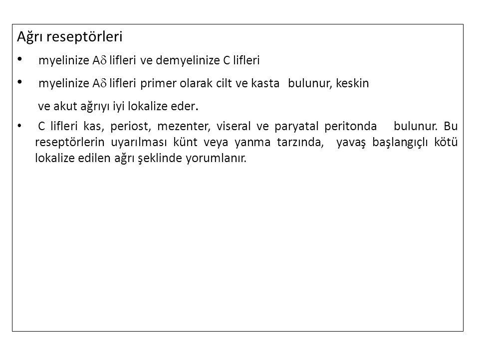 myelinize A lifleri ve demyelinize C lifleri