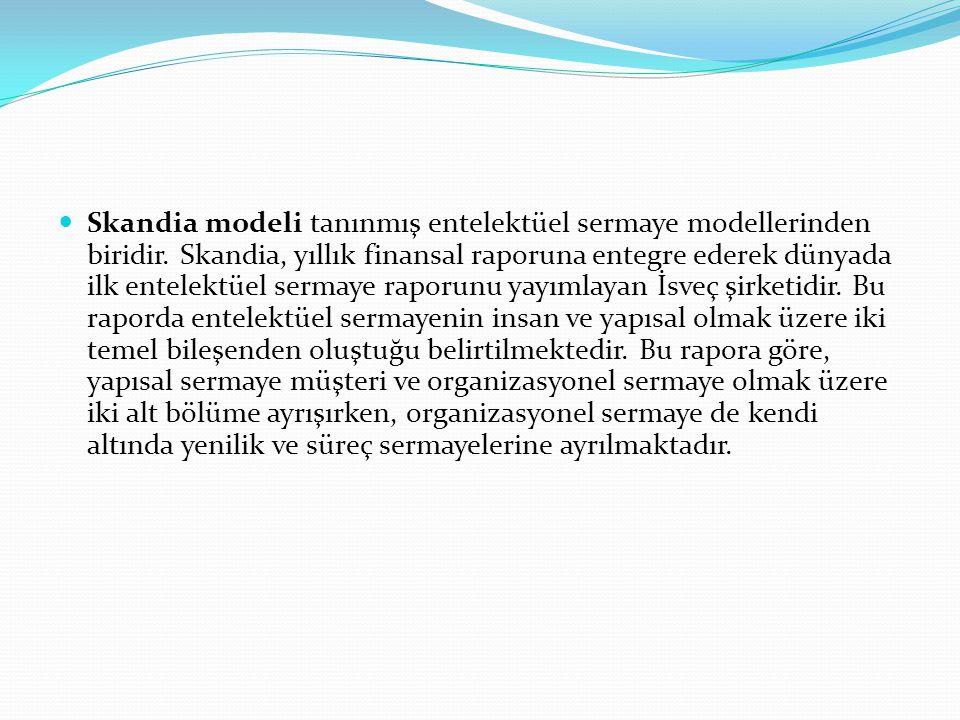 Skandia modeli tanınmış entelektüel sermaye modellerinden biridir