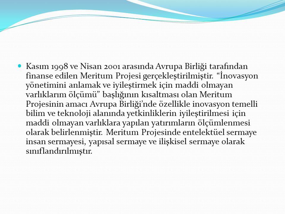 Kasım 1998 ve Nisan 2001 arasında Avrupa Birliği tarafından finanse edilen Meritum Projesi gerçekleştirilmiştir.