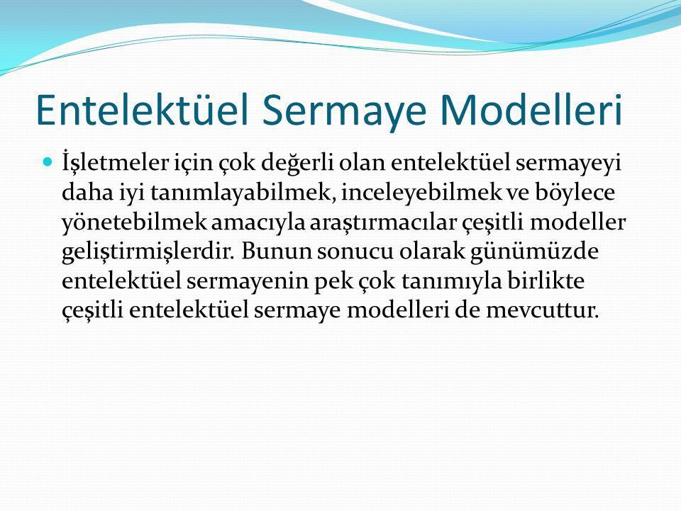 Entelektüel Sermaye Modelleri