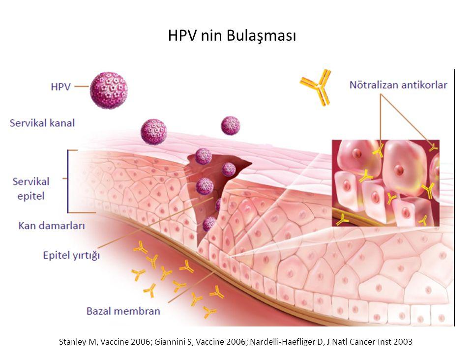 HPV nin Bulaşması Stanley M, Vaccine 2006; Giannini S, Vaccine 2006; Nardelli-Haefliger D, J Natl Cancer Inst 2003.