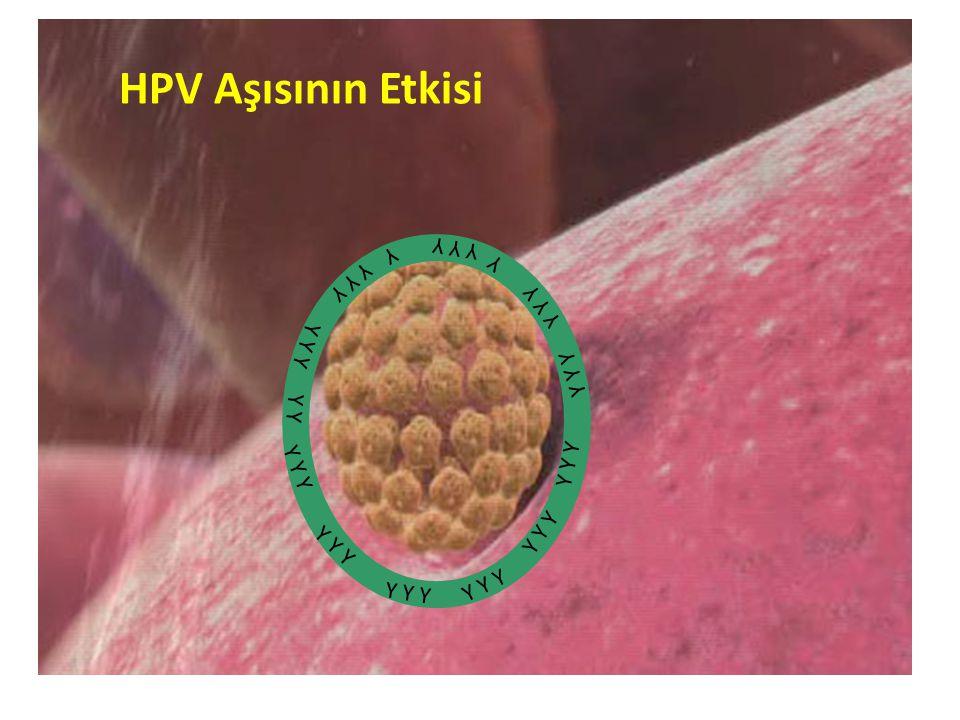 HPV Aşısının Etkisi Y Y Y Y Y Y Y Y Y Y Y Y Y Y Y Y Y Y Y Y Y Y Y Y Y