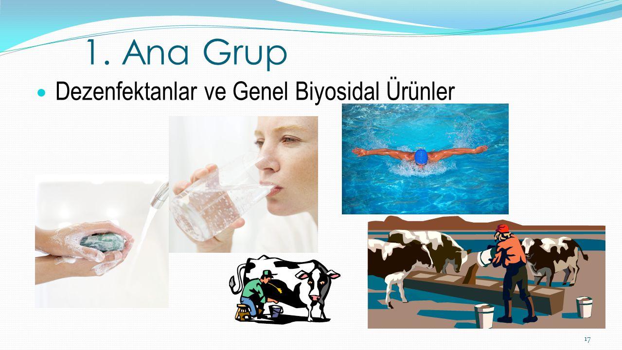 1. Ana Grup Dezenfektanlar ve Genel Biyosidal Ürünler