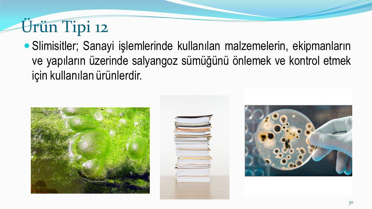 Ürün Tipi 12