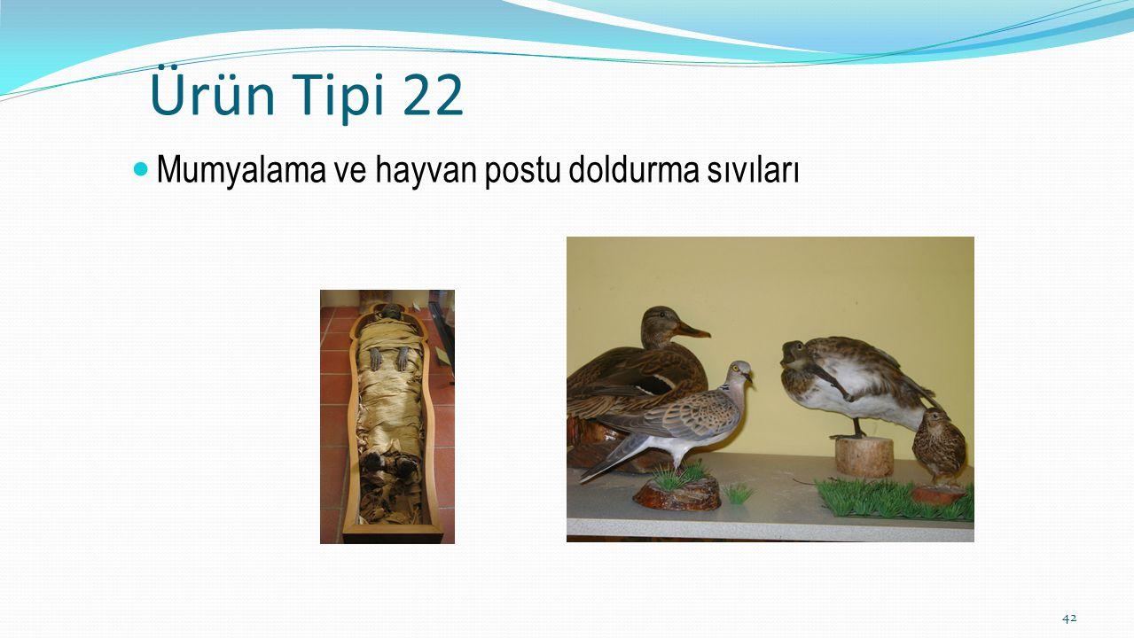 Ürün Tipi 22 Mumyalama ve hayvan postu doldurma sıvıları