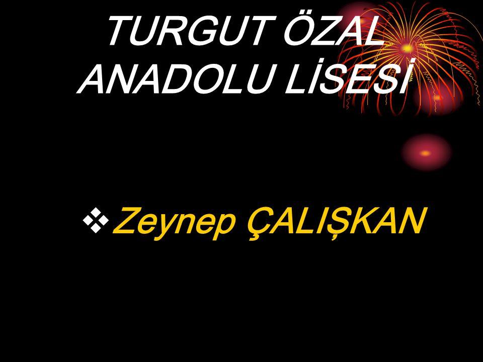 TURGUT ÖZAL ANADOLU LİSESİ